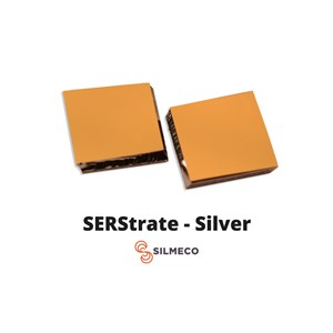 Sers Substrate Silver